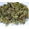 CBD 11%- Small Buds Lemon - sachet 10 g