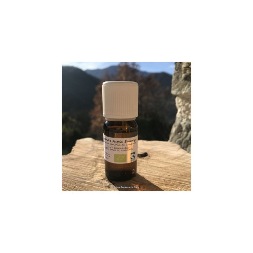 Huile Essentielle de Lavande Aspic (Lavandula Latifolia L. Spica) 250 ml