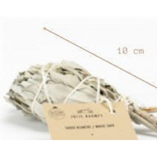 Sauge blanche de purification - bouquet de 10 cm - 15 à 20 g environ