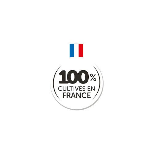 HERBES DE PROVENCE 100 % France - 25 g - ORANESSENCE