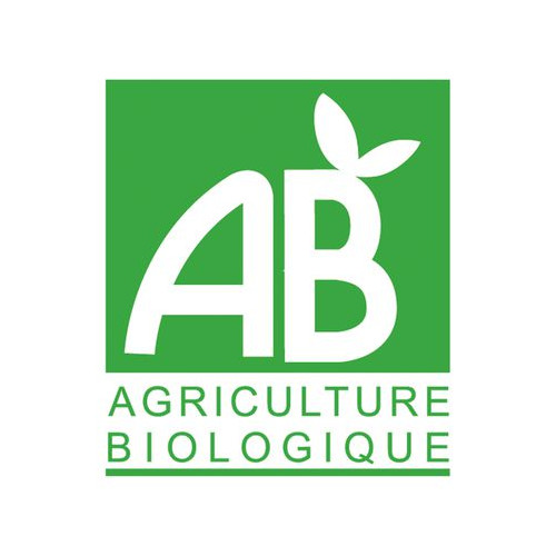 SIROP DE PLANTES BIO - Mûres de Bourgogne - flacon 50 cl