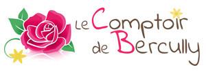 COMPTOIR DE BERCULLY